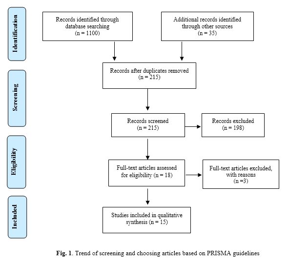 A Systematic Review of the Evidence on the Effects of